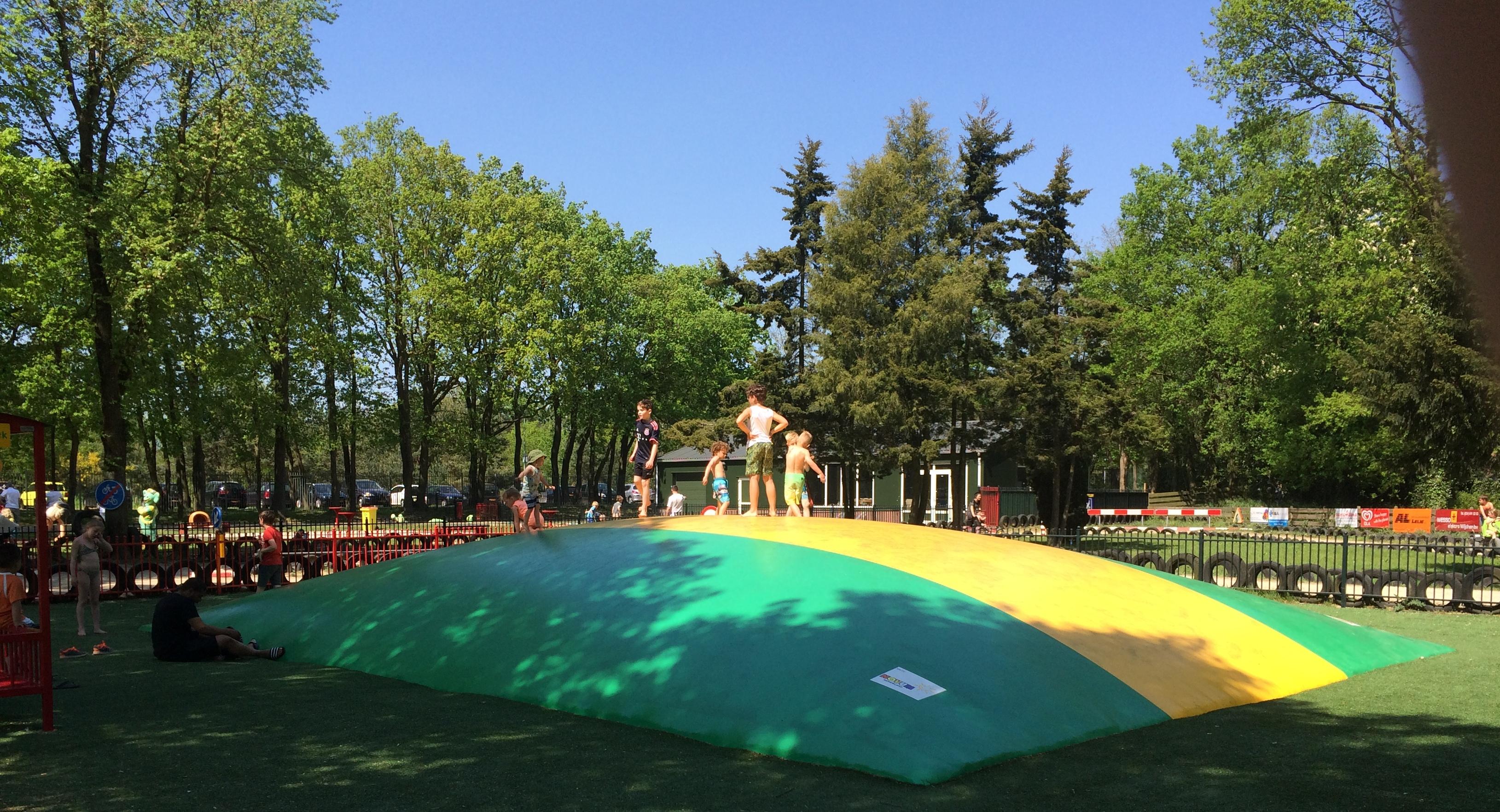 Blije Dries air trampoline springkussen