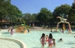 Blije Dries openlucht zwembad